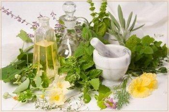 Свойства травяного лечения детей